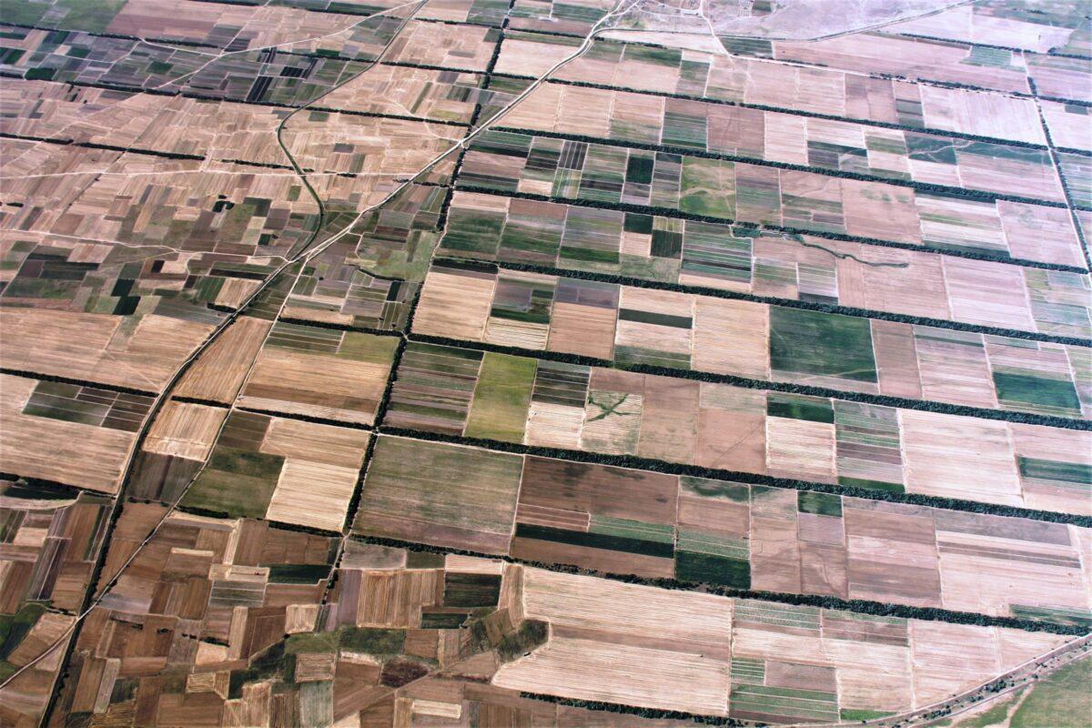 Airzone Gleitschirmreise Mazedonien Felder