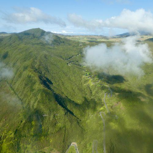 Gleitschirmreise La Reunion Regenwald